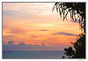 late afternoon in uluwatu beach (harrypwt) Tags: harrypwt bali uluwatu indonesia canons95 s95 leaves paintinglike sky pink sunset framed