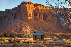 Sunrise at Capitol Reef, Utah (EdBob) Tags: utah torrey capitolreef sunrise butte shack homestead farm ranch morning dawn hillside mountain rural country countryside house abandoned building nopeople tree usa america southwest americansouthwest edmundlowephotography edmundlowe allmyphotographsare©copyrightedandallrightsreservednoneofthesephotosmaybereproducedandorusedinanyformofpublicationprintortheinternetwithoutmywrittenpermission landscape geology geoligical rock