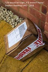 Quotograph - Week 14/52 Challenge (fstop186) Tags: quotograph stephenhawking quotation lifewouldbetragic damaged wet parcel week1452 courier broken motivational