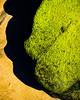 BlackGreen.jpg (Klaus Ressmann) Tags: klaus ressmann omd em1 abstract beach color efuerteventura nature rock spring design flcabsnat green lava minimal seaweed klausressmann omdem1