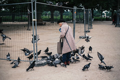 Vieille femme aux pigeons. (theodirector) Tags: people parislife parisstyle parisian parisianlife parisianpeople peoplephotography streetphotography streetphoto streetphotographer streetreport streets pariscity citybyday old oldwoman oldpeople birds alone lonely feed animal animals pigeon louvre feeding food pigeons
