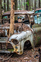 Meets The Description (Wayne Stadler Photography) Tags: abandoned preserved junkyard georgia classic automotive derelict overgrown vehiclesrust rusty retro vintage oldcarcity rustographer rustography white