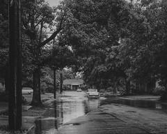 Rain in 1950's - Vintage Film (Photo Alan) Tags: vintage vintagefilm vintagenegative negative film blackwhite blackandwhite us rain