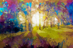 Prismatic Forest (Susan Maxwell Schmidt) Tags: prismaticforest colorfulleaves multicolortrees sunbeams watercolorfoliage romanticruralscene rusticlandscape vividcolors bucolicwoodland susanmaxwellschmidt scenicwoods garden earthy plantlife cottagechic countryhouse breathtakingcountryside beautifulscenery serenesunshine peaceful nature natural organic serenity outdoors remote secluded seclusion turquoise aquablue rubyred ultravioletpurple violet lilac brilliantyellowsun plum greengrass fuchsiapink magenta backwoods lawn boonies sticks boondocks sylvan land bigwall large huge