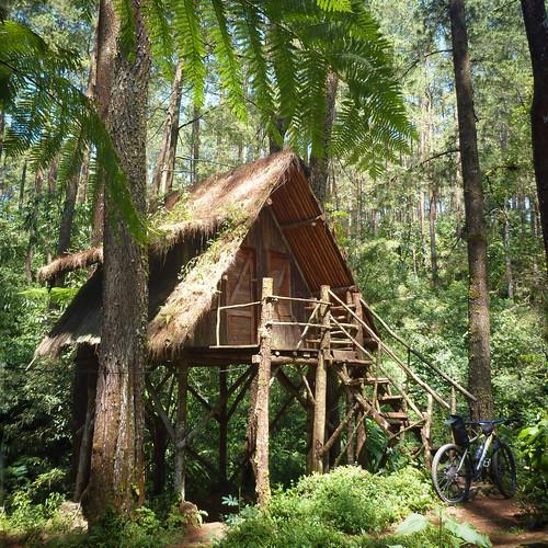 """""""Rumah Pohon"""" @ Kareumbi-Masigit Park"""