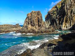 P9070178 (dbrodsky9) Tags: kailua hawaii unitedstates us