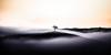 Out of the dark (alexanderkoch) Tags: himmel landschaft outdoor sonne toskana workshop nebel baum sonnenaufgang hügel sonnig wolken italien