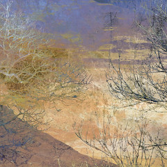 Colours of March (Ali's view) Tags: borrowdale multipleexposure layers march colour trees winter hillside