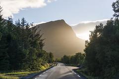 Engeløyveien