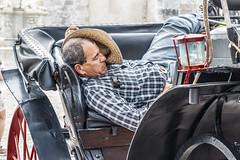 Havana Siesta (Tom Kilroy) Tags: havana cuba driver oneperson outdoors males adult transportation sitting wheel onemanonly travel modeoftransport working manualworker lifestyles occupation onlymen old man siesta