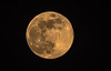 Europe / Bloodmoon 2018-04-29 (Torok_Bea) Tags: fullmoon moon telihold hold beautiful nikon nikond5500 tamron tamron150600 night bloodmoon