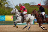Polo (.rog3r1) Tags: canon 5ds polo pferd sport canonef100400