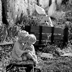Le voyeur  -  the peeper (Philippe Haumesser Photographies (+ 6000 000 view)) Tags: statuette statuettes garden rabbit lapin jardin art nikond7000 nikon d7000 reflex noiretblanc blackandwhite monochrome 2018 littledoglaughednoiret