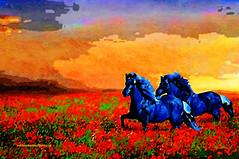 WILD BLUE HORSES. (Viktor Manuel 990.) Tags: horses caballos blue azul landscape paisaje sky cielo wildhorses digitalpainting pinturadigital abstract abstracto brightcolors coloresbrillantes querétaro méxico victormanuelgómezg surrealism surrealista