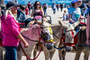 donkey rides (Tony Shertila) Tags: europe britain england merseyside wallasey unitedkingdom newbrighton festival people promenade donkey children ride