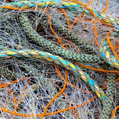 Fishnet Squares 1 (No Great Hurry) Tags: fish fishing paraphernalia nogreathurry robinmauricebarr hastings foundabstract abstract urban colours lines linesandcurves cables rope plastic net environment environmenal environmental foundart art layers spring tangled