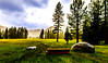Sierra Nevada Meadow (JarrodLopiccolo) Tags: sierra sierranevada markleeville grovershotsprings meadow trees grass green landscape nature outdoor sky cloud spring bench