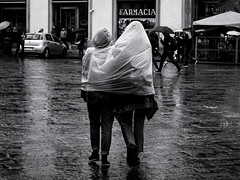 It's a Wrap! (Feldore) Tags: florence rain poncho plastic wrapped raining funny italy italian feldore mchugh em1 olympus 1240mm couple sharing rainwear
