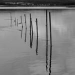 Stacks on lake Neuensiener See thumbnail