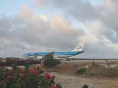 Bonaire 2018 (Valerie Hukalo) Tags: bonaire antilles caraïbes island île aéroport airport airbus a330 plane avion klm paysbas hukalo buddydiveresort valériehukalo