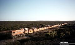 3477 A1512 freight Duggan 18 February 1983 (RailWA) Tags: railwa philmelling westrail 1983 a1512 freight 18 february