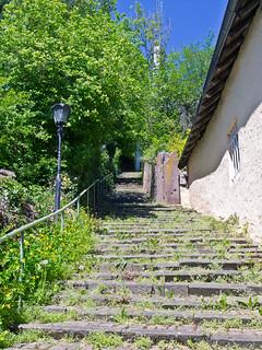 Stufen / Stairs