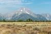 Grand Teton NP (sgplewka) Tags: usa 2017 grandtetonnp mountmoran urlaub moose wyoming us