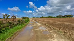 The Road to Nowhere (Julie (thanks for 9 million views)) Tags: 2018 one photo each day2 2018onephotoeachday wexford ireland irish landscape scenery path ploughed arable sky fence clouds spring puddles water reflection caminho