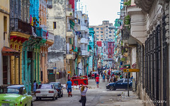 Welcome to the jungle... | TrinDiego (TrinDiego) Tags: calles habana havana cuba trindiego candid street photography greaterantilles caribbean franco city urban colours catchycolour