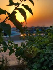 Good morning ☀️ (basem_teacher) Tags: flicker lightroom ship sea city kuwait photographer photography nature beautiful view scenery scene inexplore adventure landscape moments sunrise goldenhour sunset