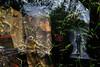 Walking the Walk (Karen Kleis - Mostly off until Monday) Tags: mannequin windowdisplay winterpark florida surreal awardtree