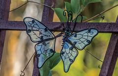 Garden Decoration (ACEZandEIGHTZ) Tags: nikon d3200 butterfly art decoration ornament bokeh trellis plant backyard garden