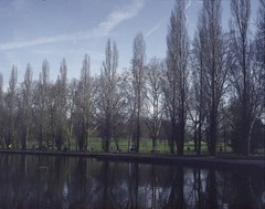 - Leave you when the summer comes along - #ledzep #spring #sceaux #france #parc #lake #trees #nature #green #water #blue #sky  #spleen #woman #over #expiredfilm #film #kodak #olympuspenee #oldcamera #morning #100 #iso #grey #peaceful #flowers #washedcolor (cleapam) Tags: ledzep spring sceaux france parc lake trees nature green water blue sky spleen woman over expiredfilm film kodak olympuspenee oldcamera morning 100 iso grey peaceful flowers washedcolors