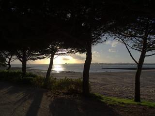 Fin de journée sur la plage !!!