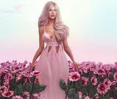 N°1207 - Summer Day ♪ (Rina Edenflower) Tags: sintiklia blush cynfulco collabor88 littlebranch secondlife secondlifefashion lelutka ysys