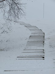 Stairs to Snowhere 02-03-2018 (gallftree008) Tags: stairs snowhere jackolinearpark stormemma rivervalley swords codublin ireland snow whiteout white brackenstown county classic co dublin dub eire eireann effect historic irish jacko jackopark march emma abstract surreal knocksedan landmark nature naturesbeauties naturescreations park tree trees thewardriver thejackopark goalpost cold blizzard winter spring blackwhite perspective
