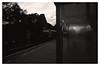 Direction Teltow (jmvanelk) Tags: berlin germany blackwhite analog filmisnotdead expiredfilm fujineopan1600 nikonf100 sbahn wollankstrasse evening teltow