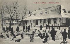 Selkirk - HB Co Dog Sled Team (vintage.winnipeg) Tags: manitoba canada vintage history historic selkirk