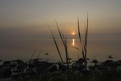 Zonsopkomst Bruinisse-4 (09-05-2018) (Omroep Zeeland) Tags: zonsopkomst bruinisse