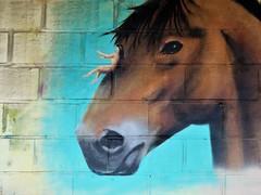 Cee Pil & Jamie / DOK - 10 mei 2018 (Ferdinand 'Ferre' Feys) Tags: gent ghent gand belgium belgique belgië streetart artdelarue graffitiart graffiti graff urbanart urbanarte arteurbano ferdinandfeys ceepil