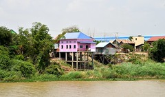 Stilted houses by the banks of the Mighty Mekong River, Cambodia. (One more shot Rog) Tags: mekong river cambodia mekongriver stilts stiltedhouses homes boat boats asia southeastasia