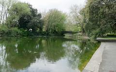 Parc St-Stephens Green, Dublin, Irelande - 6867 (rivai56) Tags: dublin countydublin irlande ie ststephensgreen parc europe sony