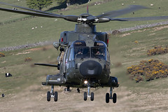 IMG_4635 copy© (Jon Hylands) Tags: zj994 royal navy merlin ten tors military aviation helicopter