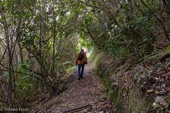 180518 104542 (friiskiwi) Tags: mahoetrack grampian nelson newzealand nz