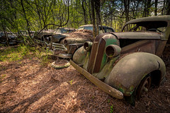 Are You Man At All (Wayne Stadler Photography) Tags: abandoned preserved junkyard georgia classic automotive derelict overgrown vehiclesrust rusty retro vintage oldcarcity rustographer rustography white pontiac 1936