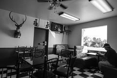 A dinner in Texas (rvjak) Tags: texas usa etatsunis united states america d750 nikon diner black white noir blanc lonely deer tête de cerf man homme seul window fenêtre bw