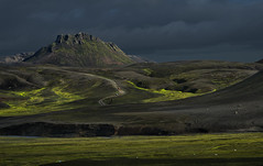 fluorescent Icelandic landscape (trying to catch up again !!!) Tags: landmannaleid landscape iceland icelandiclandscape cars dirtroad track green sheep mountain travel outdoor outside fluorescentgreen