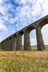 Ribblehead Arches (Dean Conley) Tags: nikond3400 nikon d3400 ribblehead ribbleheadviaduct arches sheep cloud clouds sky white blue handheld perspective tokina tokina1120mm northyorkshire flickr