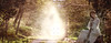 dream forest (Poli Maurizio) Tags: sony sonydsch200 disegno art abstract painting sculpture museum gallery virtual artist master famous canvas painter collection drawing impressionism naturalism renaissance expressionism realism baroque sketch garden portrait autumn flower light nature sky spring summer indoor travel water woman yellow blue black white color movement figure macro photo object fine unlimited still life mattepainting fantasy fantastic facebook twitter linkedin pinterest instagram tumblr outdoor atmosferic watercolor technique surrealism digitalart 3dweddingpartyfamilytravelfriendsjapanvacationlondonbeachcaliforniabirthdaytripnycsummernatureitalyfrancemeparisartflowerssanfranciscoeuropechinaflowernewyorkwaterpeoplemusiccameraphone 3daustraliachristmasusaskygermanynewcanadanightcatholidayparkbwdogfoodsnowbabysunsetcitychicagospaintaiwanjulybluetokyoenglandmexicowinterportraitgreenred 3dpolimaurizioartworkredfunindiaarchitecturegardenmacrospringthailandukseattlefestivalconcertcanonhouseberlinhawaiistreetlakezoofloridajunemaywhitevancouverkidstreecloudstorontobarcelonageotaggedhome 3dbwbwdigitalseadaytexasscotlandcarlighthalloweencampingchurchanimalstreeswashingtonrivernikonaprilbostongirlirelandgraffitiamsterdamrocklandscapeblackandwhitecatsnewyorkcitysanromeroadtripurbanhoneymoonocean 3dwatercolorsnewzealandmarchblackmuseumyorkhikingislandmountainsyellowsydneysunhongkongshowgraduationcolorfilmmountainanimallosangelesschoolmoblogphotodogs 3dartdesigndisegnosiciliacalabriabasilicatacampaniamarcheabruzzomoliselaziotoscanaemiliaromagnalombardiavenetofriuliveneziagiuliapiemontevalledaostaliguriatrentinoaltoadigepuglia 3dlandscapepaesaggiolunasolemarenuvolecittàtramontoalbamontagnecollinenebbialuceautomobilearredamentointerniesterninaturamortacieloragazzadonnauomobambinofruttabarca 3dcanigattirinascimentomodelbarocconaturalismomattepaintingfuturismoastrattismocubismosurrealismorealismoiperealismoclassicismorococomanierismoromanticismoimpressionismogiocovirtua