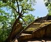 La misteriosa piramide etrusca (giorgiorodano46) Tags: aprile2018 april 2018 giorgiorodano nikon bomarzo lazio italy tuscia piramideetrusca piramide bosco woods foresta antichità etruria